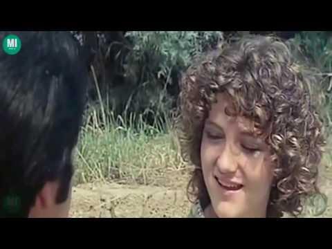 Un Toro Da Monta (1976) Italian Movie
